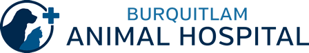 Burquitlam Animal Hospital